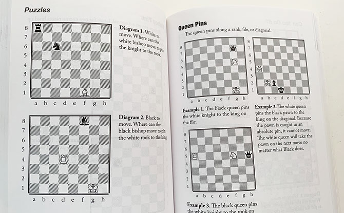 How To Beat Your Kids At Chess – An Adult's Beginner's Guide to Chess by David MacEnulty Review
