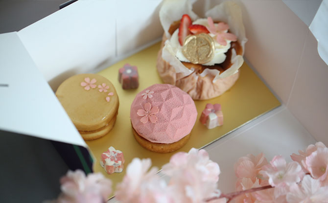 Spring Sakura Pastry Box