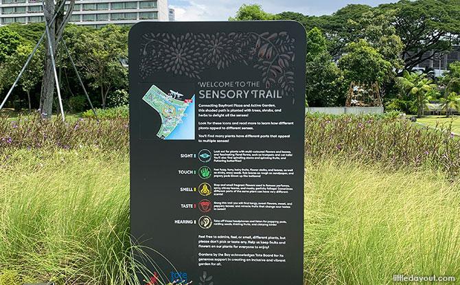 Gardens by the Bay's Sensory Trail