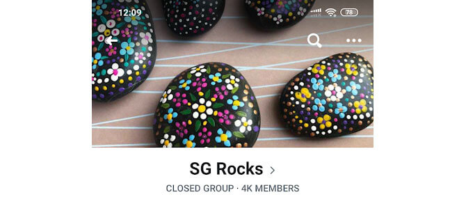 How does a family participate in SG Rocks?