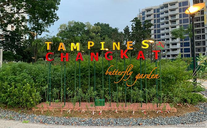 Tampines Changkat Butterfly Garden: Neighbourhood Green Spot & Swings