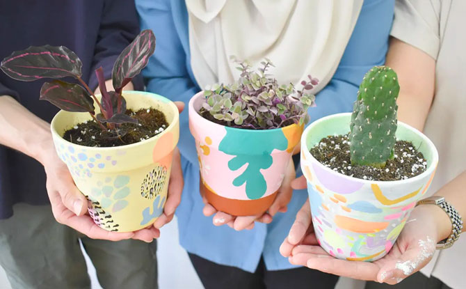 Terracotta pot painting