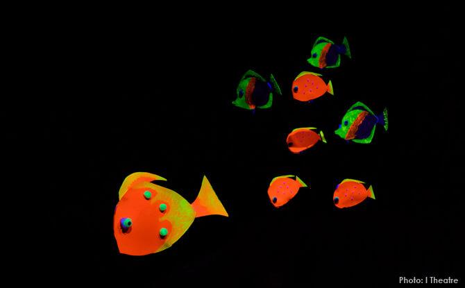 Luminous Fish