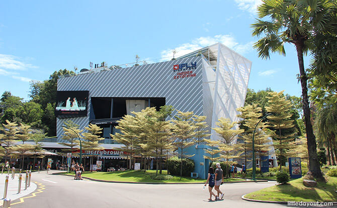 iFly Singapore Review