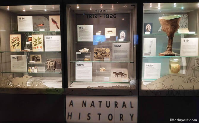 Interesting Finds at 200: A Natural History