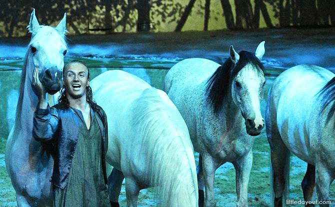 Cavalia Horses