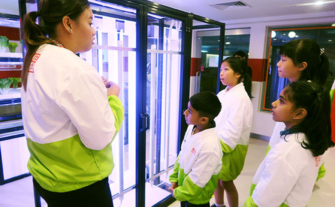 At the Urban Farm, kids get to learn how modern technology is being used in indoor and urban farming.