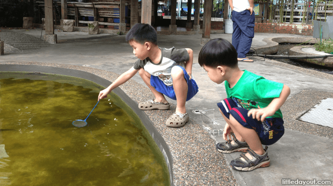 Longkang Fishing at Qian Hu Fish Farm