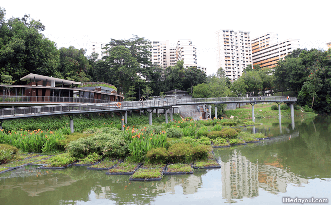 Pang Sua Pond's floating wetlands and 3G Wellness Centre