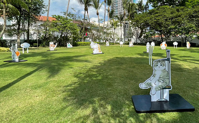 Paw-verbs on the Lawn Programmes at Malay Heritage Centre