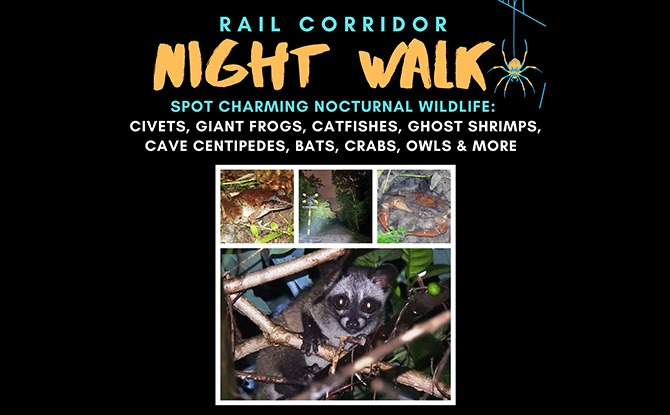 Little Night Outing: Nature Night Walks at Rail Corridor