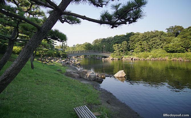 Natural beauty of Shinagawa Kumin Park