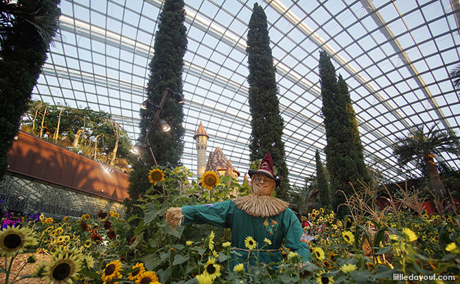 The Scarecrow, Dorothy's Companions