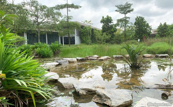 Kranji Coastal Nature Park: Sungei Buloh Wetland Reserve's Extension