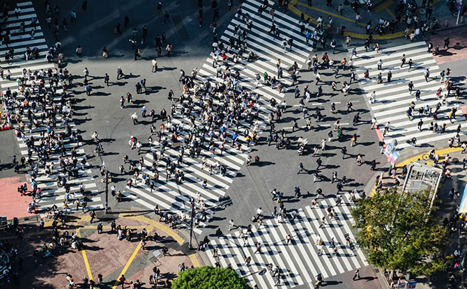 Live Camera of Shibuya Crossing