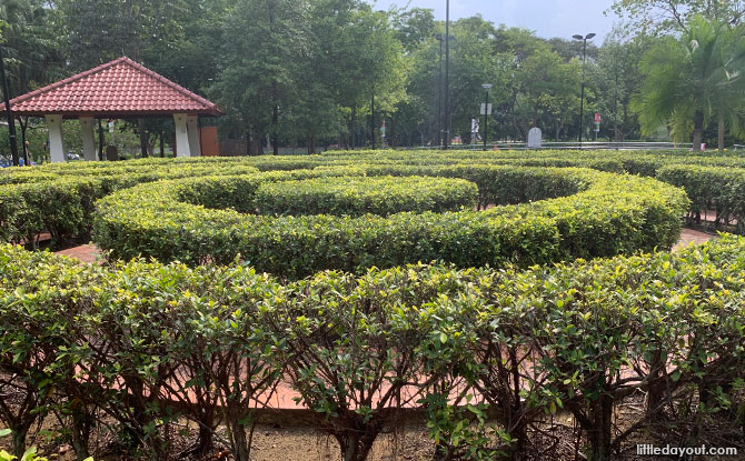 Bishan Hedge Maze: Green Circle In The Park
