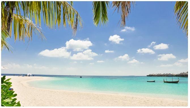 Beach. Canva Virtual Background