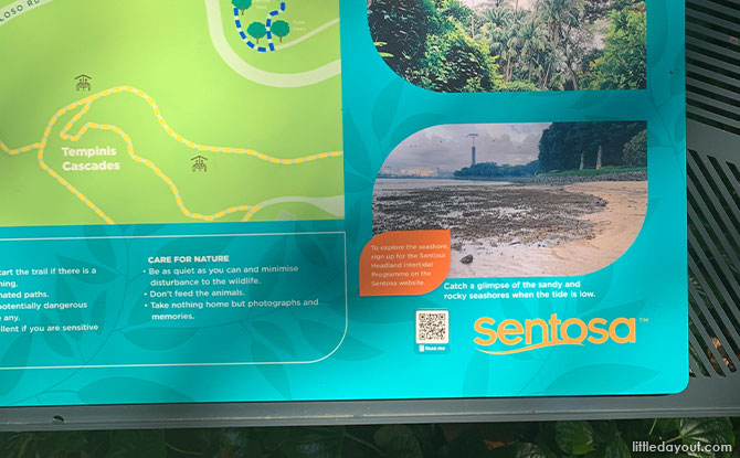 Scanning the Nature Interpretive Signs