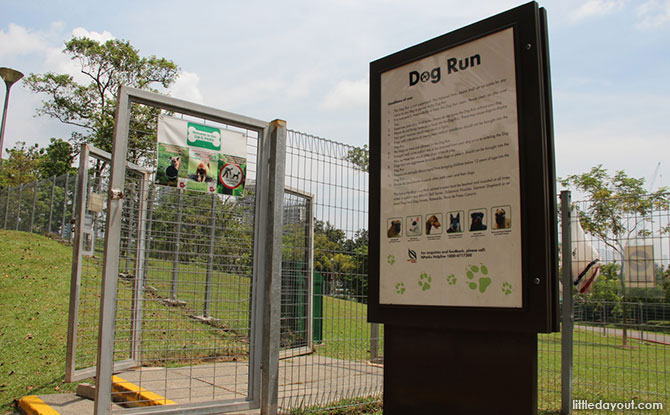 Clementi Woods Park Dog Run