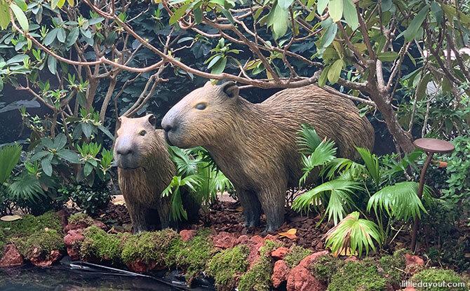 Capybaras replica