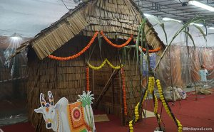 Indian Hut Decorated for Pongal 2019