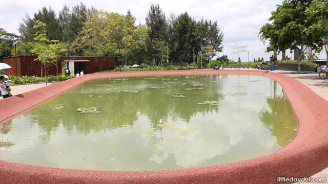Pond Wide