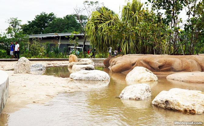 Clusia Cove, Jurong Lake Park