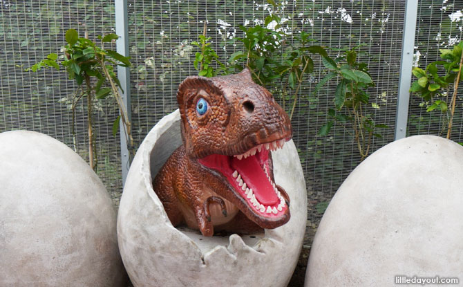 Baby T-Rex Dinosaur back from the Dentist