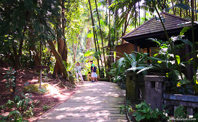 Natural surroundings at Siloso Beach Resort