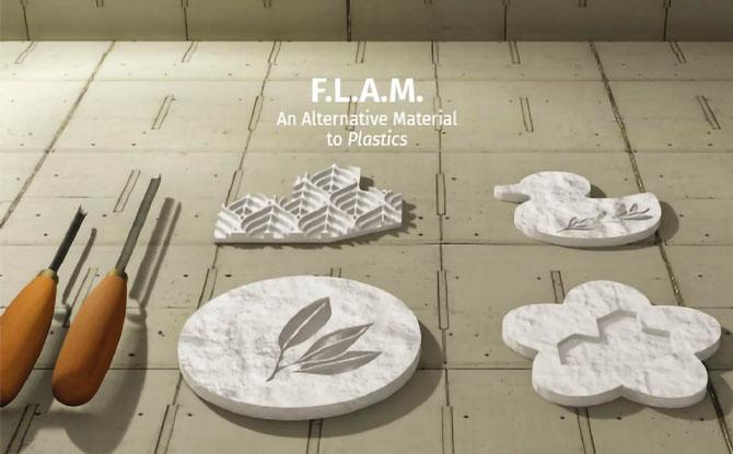 FLAM Biomaterial: An Alternative to Plastics