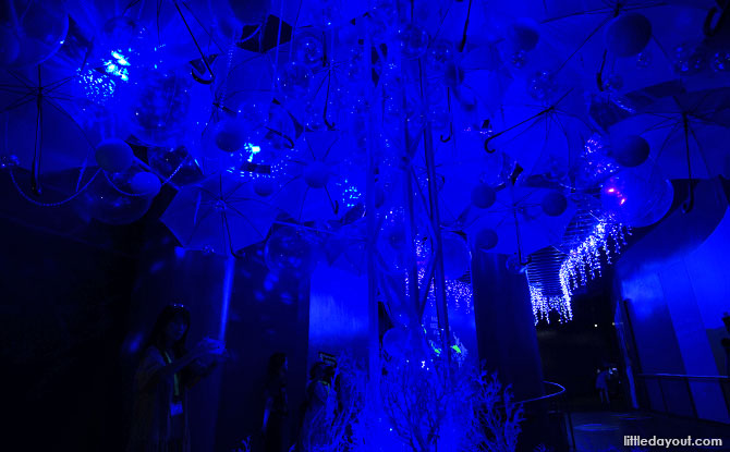 Installation at Glowing Ocean, SEA Aquarium