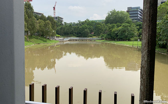 Swamp Pavilion, Jurong Eco Garden