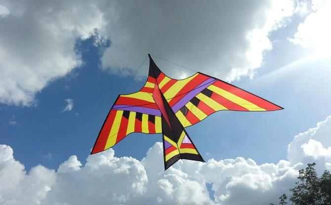 Kite Culture