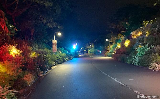 Jurong Lake Gardens Light Up 2021