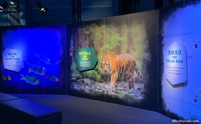 Living Worlds: An Animal Planet Experience – Take a Step Behind the Screen