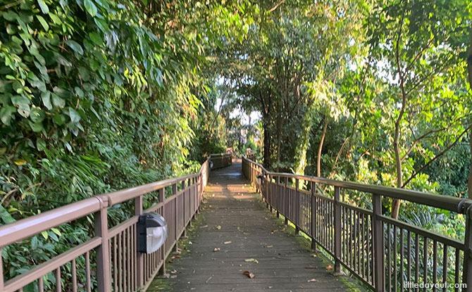 Mount Faber's Marang Trail