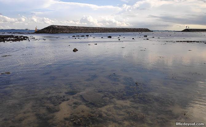 Exploring Sisters' Island Marine Park at Big Sister's Island