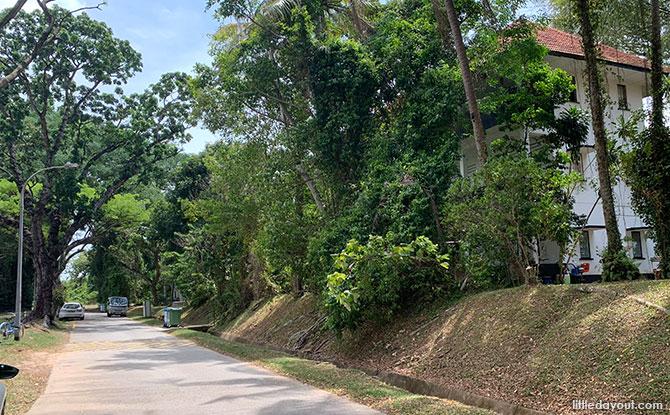 Woking Road