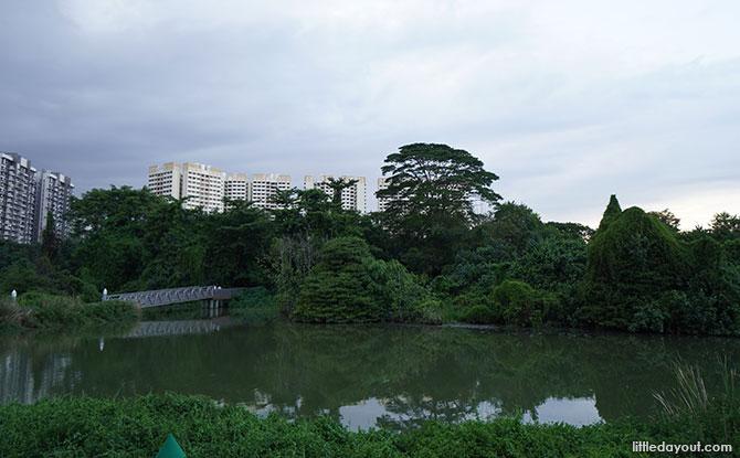 Sengkang Floating Wetland plants and trees
