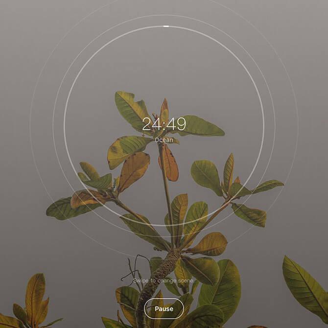 App#4: Tide
