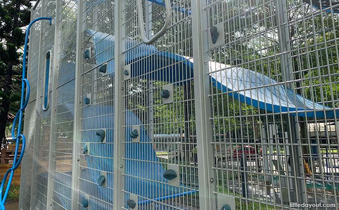 Bukit Batok East Ave 4 Wallhola Vertical Playground