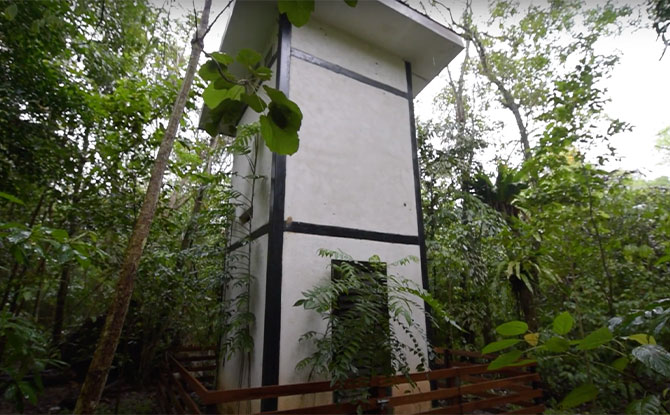 Visit to the off-limits bat house