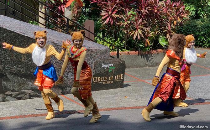 05 circle of life festival
