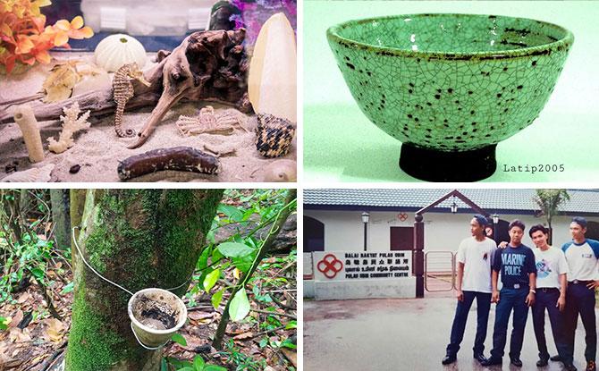 Pesta Ubin 2021: Free Activities To Learn More About Pulau Ubin