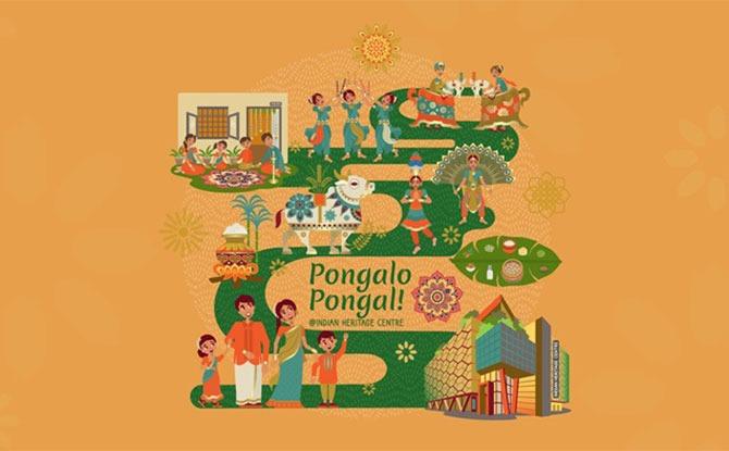 Pongalo Interactive