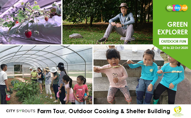 Little Day Out's Green Explorer Camp: Outdoor Adventure