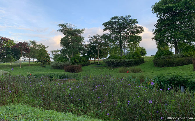 Holland Green Linear Park: A Walk Beside The Canal & Visit To A Playground - rain garden