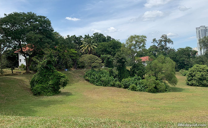 Tanglin Halt Rail Corridor & Wessex Estate: From Tracks To The Water Tower