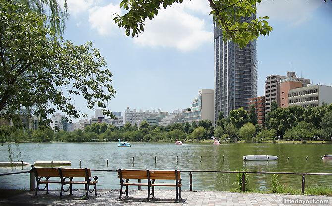 Boating at Ueno Park's Shinobazu Pond