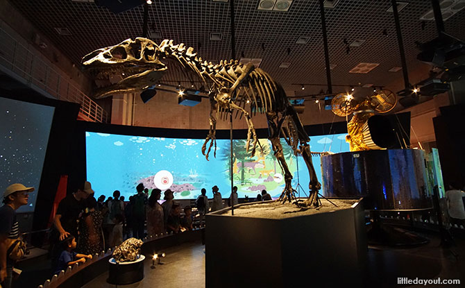 National Museum of Nature and Science, Tokyo